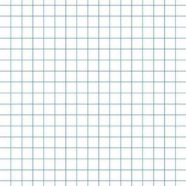 100 Graph Paper