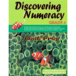 Discovering Numeracy Grade 4 by Shawn Johnson & Janice Chambers