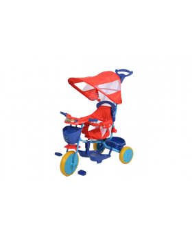 Paw Patrol Push and Ride Stroller Tricycle