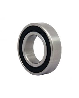 Ball Bearing 6301RS