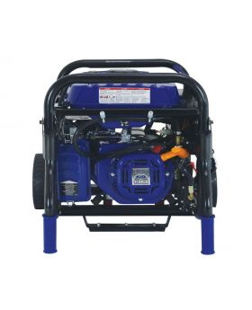 Ford FG5250PBE 5250 Watt Dual Fuel Gasoline/Propane Powered Electric/Recoil Start Portable Generator 224cc