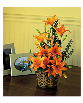 Asiatic Lilies Floral Arrangement