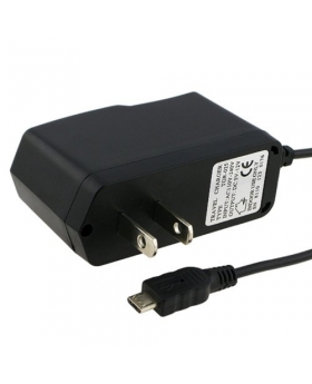 Generic Micro USB Wall Charger