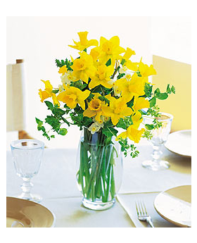 Charming Daffodils Floral Arrangement
