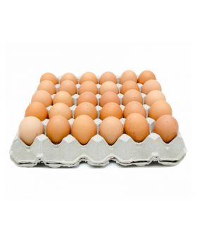 Chickmont Fresh Eggs 30 Count