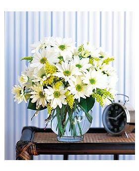 Daisy Cheer Floral Arrangement