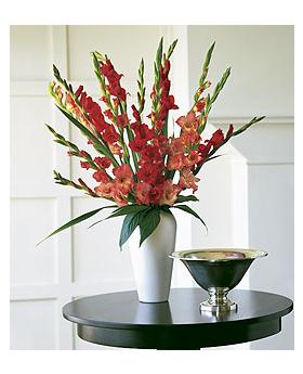 Glorious Gladioli Floral Arrangement