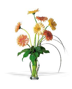 Grand Gerberas Floral Arrangement