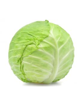 Green Cabbage 1 Kg/2.2 Lbs