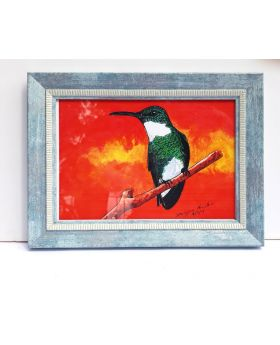 Jamaican Humming Bird Drawing Framed