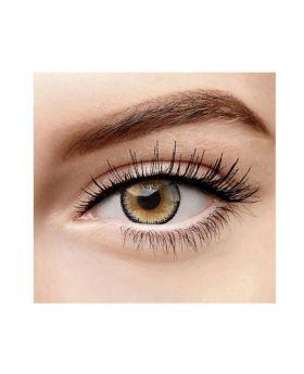 Lemon Glass Colour Series Big Eyes Cute Coloured Contacts (Brown)