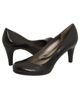 Side-View-of-Both-Naturalizer-Lennox-Pumps