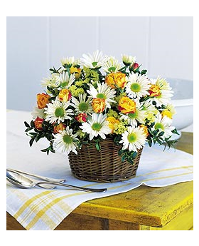 Roses and Daisies Arranged Floral Arrangement