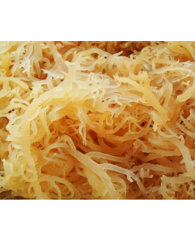 Sea Moss (Irish Moss) Jamaican 4 OZ. - Bulky Foods JA