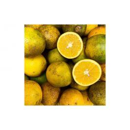 Oranges 2.5 Kg/5.5 Lbs Bag