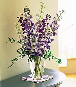 Delphinium Dreams Floral Arrangement