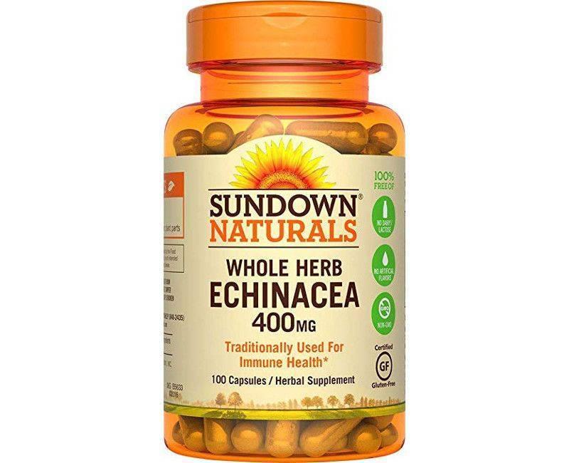 Sundown Naturals Whole Herb Immune System Strengthening Echinacea 400mg 100 Capsules