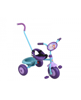 Frozen Tricycle