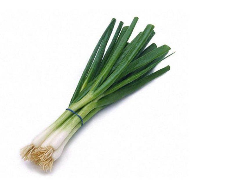 Green Onion (Scallion) Kg