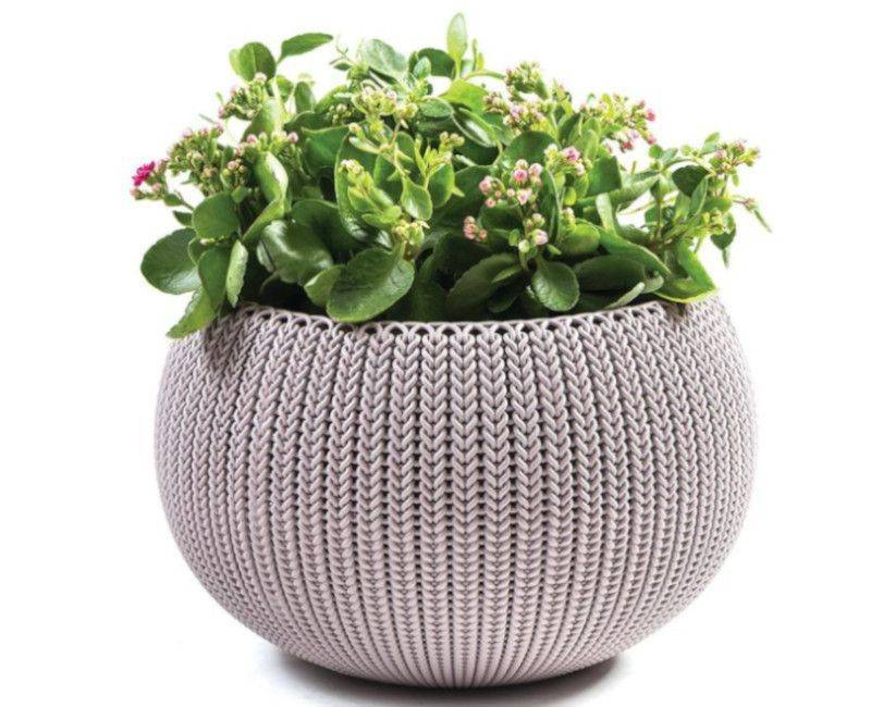 Keter Knit Planter - with plant