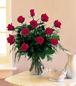 One Dozen Red Roses Floral Arrangement
