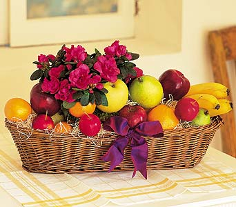 Plant and Fruit Basket