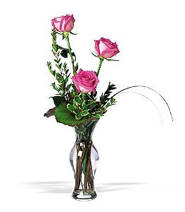 Three Pink Roses Floral Arrangement
