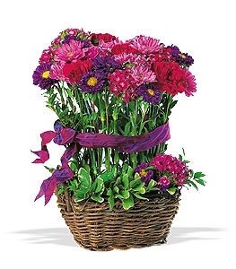 Basket of Smiles Floral Arrangement