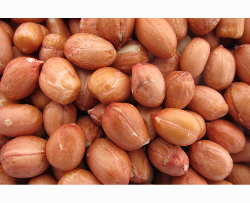 Bulky Foods JA -  Shelled Peanuts One Pound Package