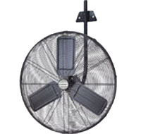 Windy Wall Fan