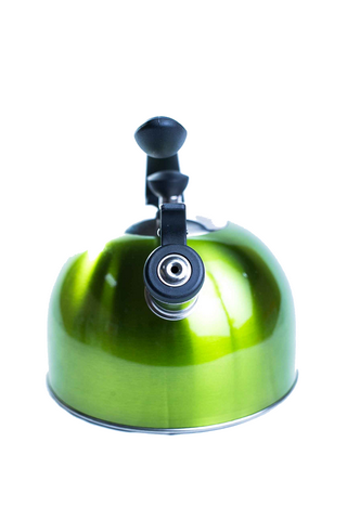 Europe Ware Stainless Steel Green Whistling Kettle K40595 front view