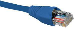 Nexxt Patch Cord Cat5e 50 Feet Blue