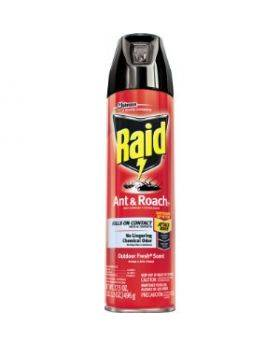 Raid-Ant-&-Roach-2x17.5-oz