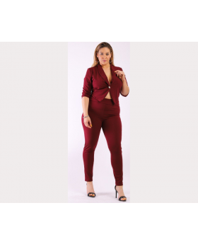 Solid Fitted Two Piece Set Blazer with Matching Full Length High-waist Pants