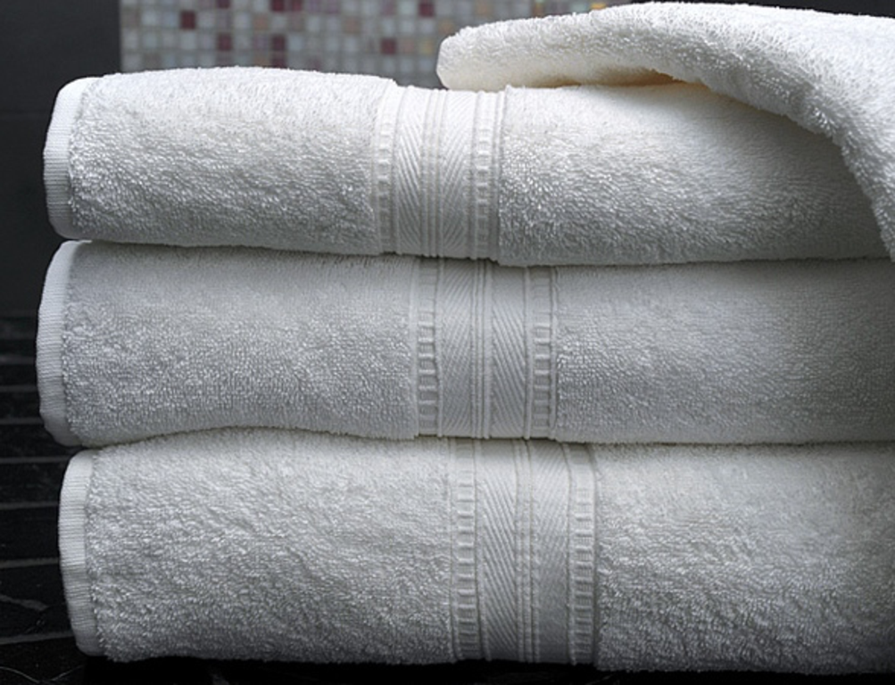 Century Tex Egyptian Cotton Towel